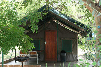Budget Kruger Park tours in a cottage tent