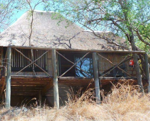 Lodge-treehouse Kruger Park safari