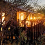 Kruger Park Tours' lodge treehouse safari