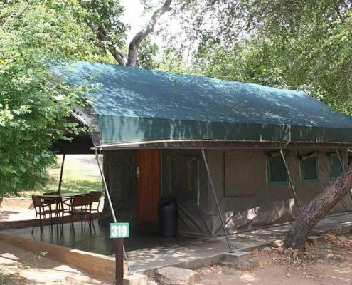 Kruger Park Safari fixed tents