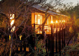 Game Reserve- Luxury Accommodation