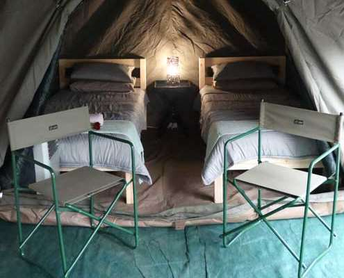 kruger park safari affordable luxury tent